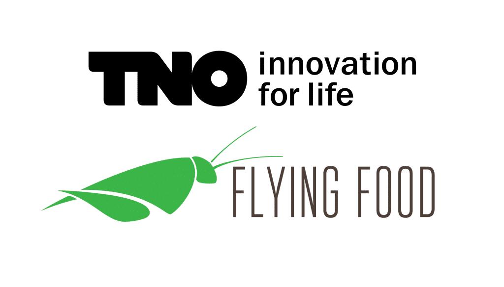 TNO - FLYING FOOD